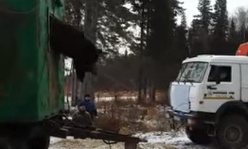 Спасти медведя из ловушки под Нижневартовском удалось лишь с помощью КамАЗа