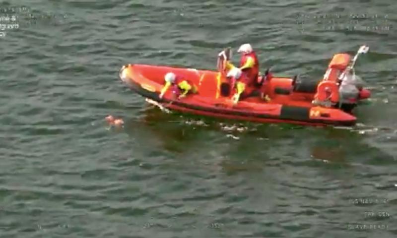 В Великобритании с помощью вертолета спасли унесенную в море собаку