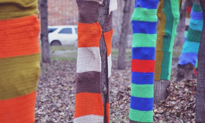 Жалостливые мастерицы одели деревья в теплые пледы в Красноярске