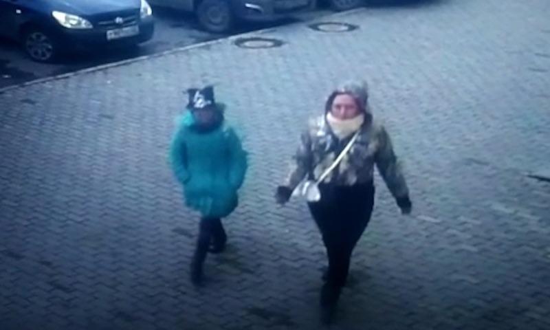 В Барнауле 12-летняя девочка грабила квартиры с помощью хомяка