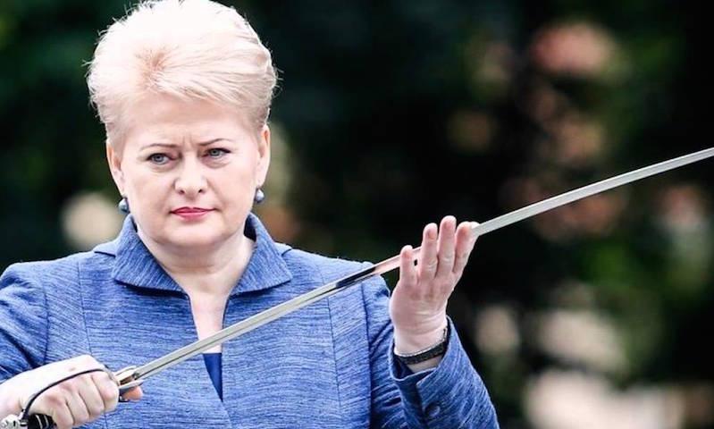 «Закон Магнитского» по-литовски приготовила Даля Грибаускайте
