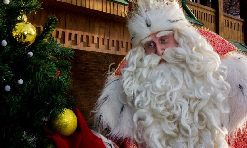 Здоровье, счастье, деньги - что просят взрослые россияне у Деда Мороза