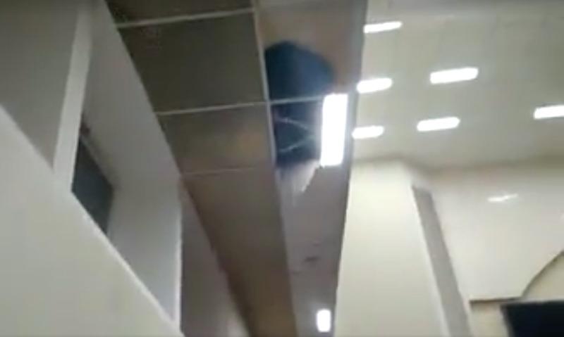 В киевской Раде на националистов обвалился потолок