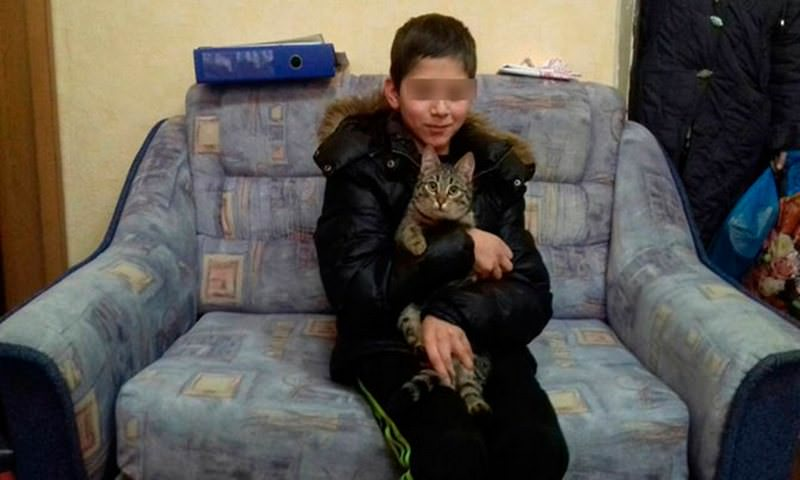 Бездомный кот помог выжить пропавшему школьнику под Калининградом
