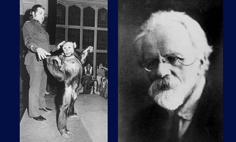 В США учёные ещё 90 лет назад скрестили человека и шимпанзе