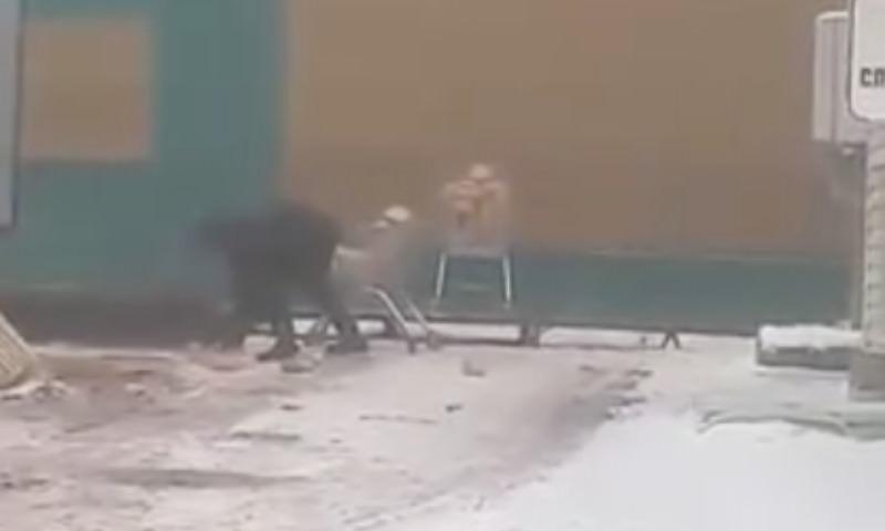 В Тюменской области сбор хлеба для магазина с земли попал на видео