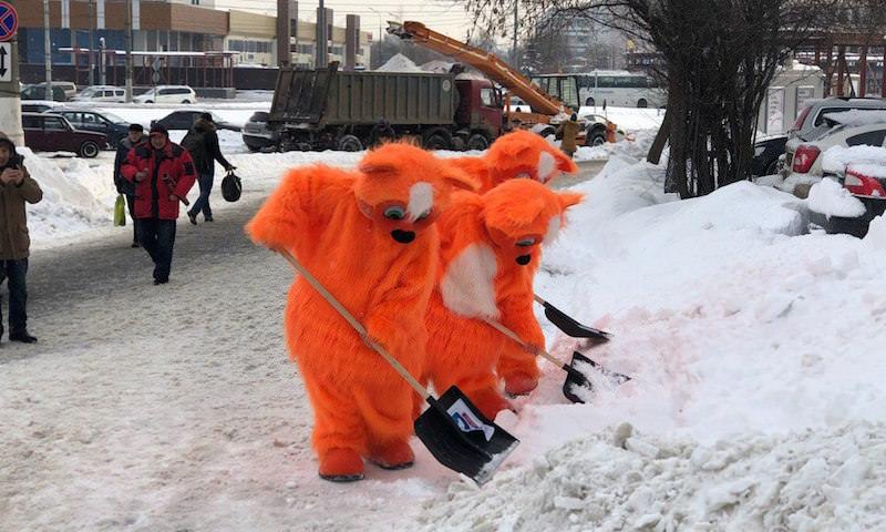 Коты спасают Москву от снега