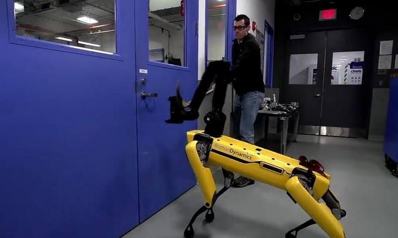 Робототехники проверили собаку-робота на напористость