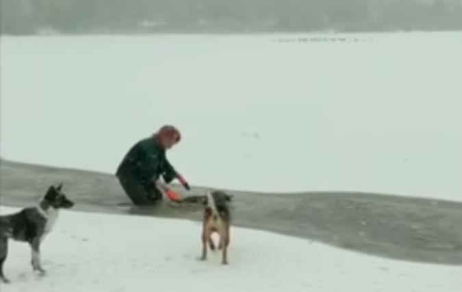 Девушка бросилась в ледяную воду спасать щенка, а хозяин струсил