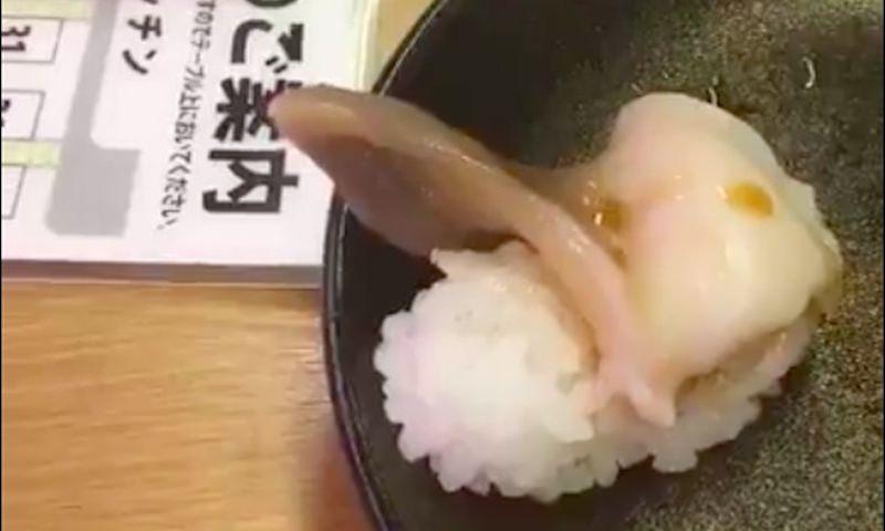 Как выглядят настоящие суши!