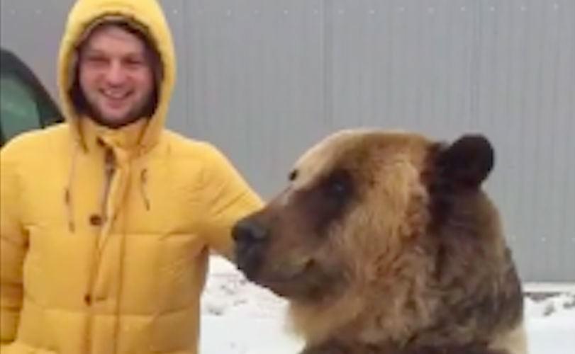 Медведя Диму научили неприличному жесту ради фотосессии