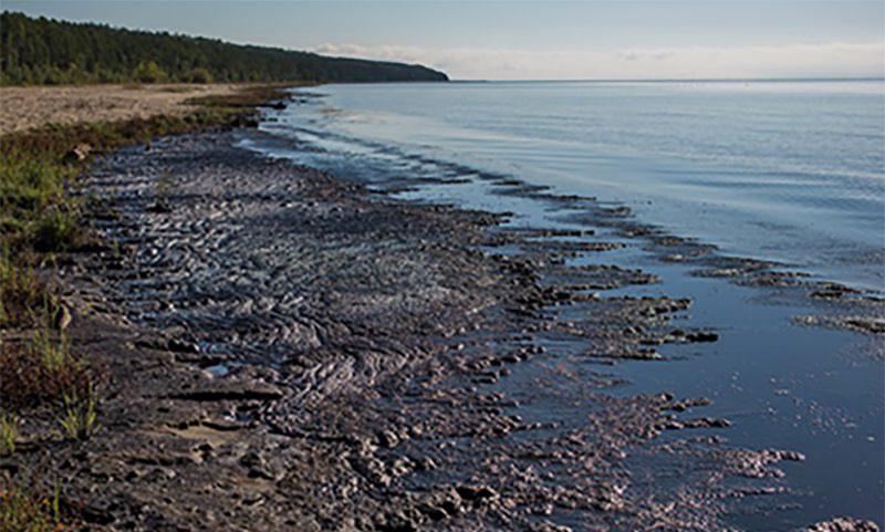 Байкал оказался на  грани экологической  катастрофы