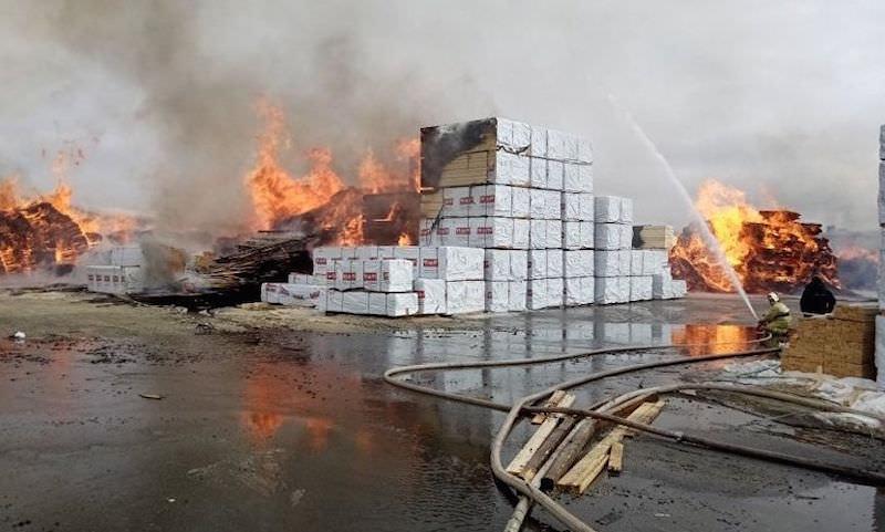 Пожар в Ленобласти уже превысил по площади