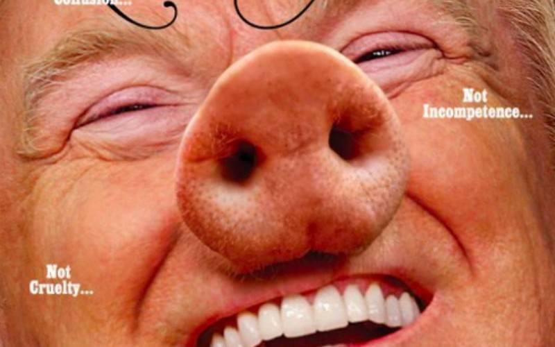 Не шутка: американский журнал представил Трампа свиньей