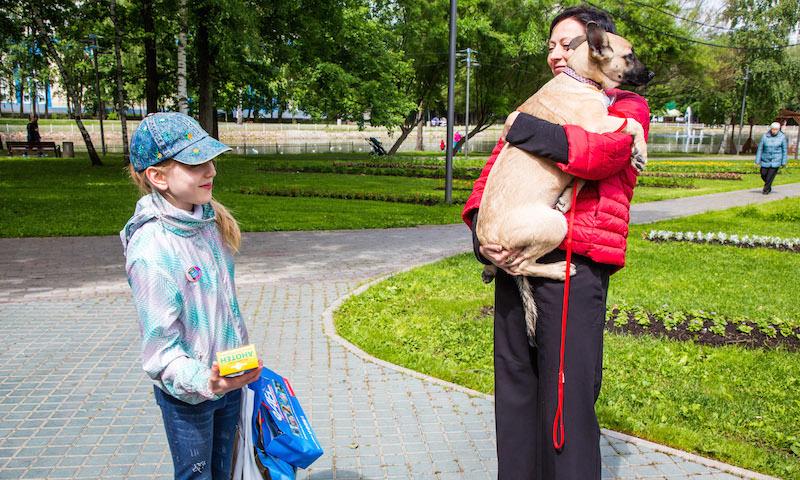 60 собак нашли новых хозяев в Москве