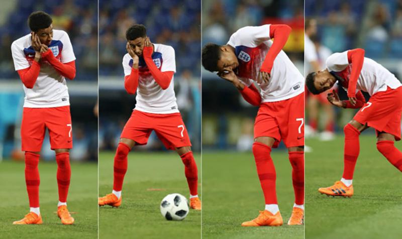 МошкАпокалипсис: матч Англия - Тунис атаковали полчища мошкары
