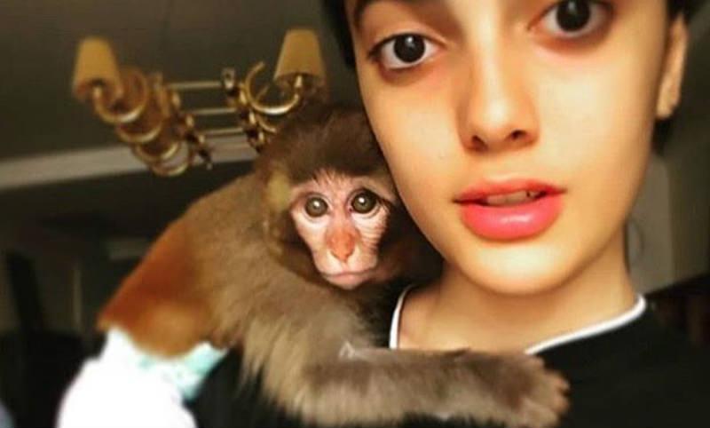 Иранскую гимнастку арестовали за танцы на камеру