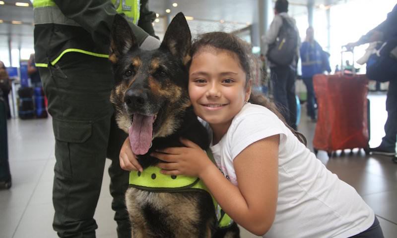 За голову собаки в Колумбии объявлена награда в 4,5 миллиона