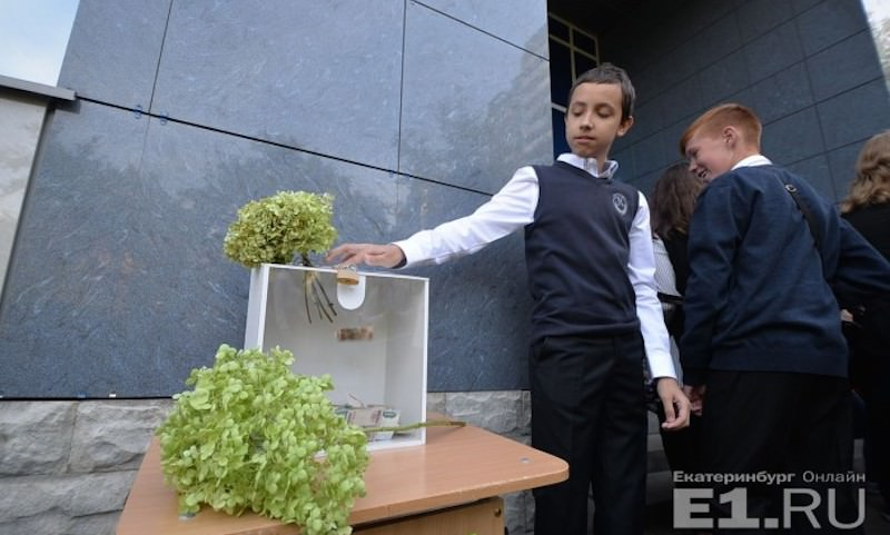 Дети собрали 50 миллионов, отказавшись 1 сентября от цветов