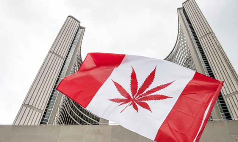 В Канаде открылась вакансия