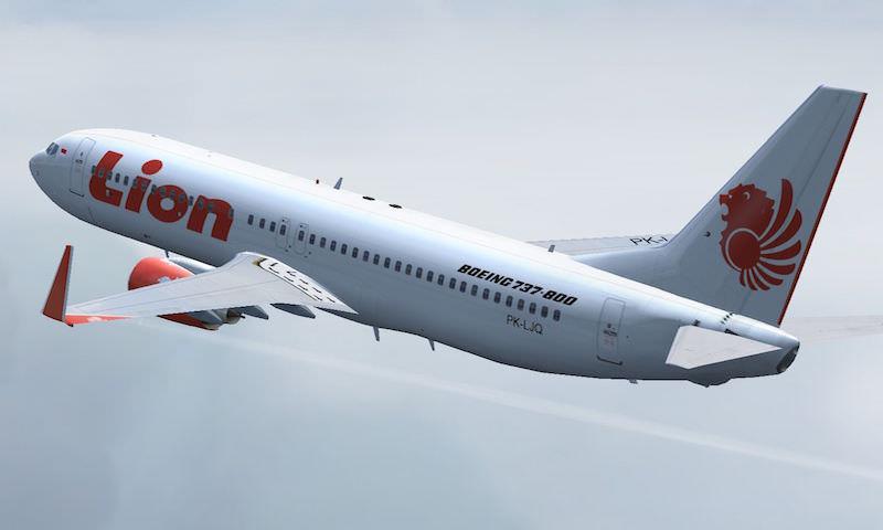 Boeing 737 упал в Яванское море, погибли более 180 человек