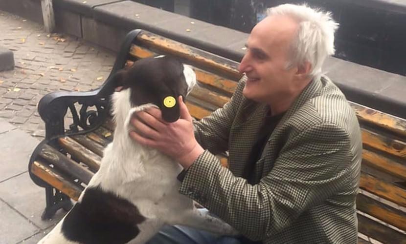 В Тбилиси мужчина нашел собаку, которую потерял 3 года назад