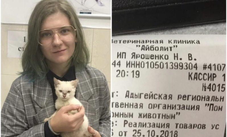 Девушка оплатила долг в 340 тысяч рублей ради котенка