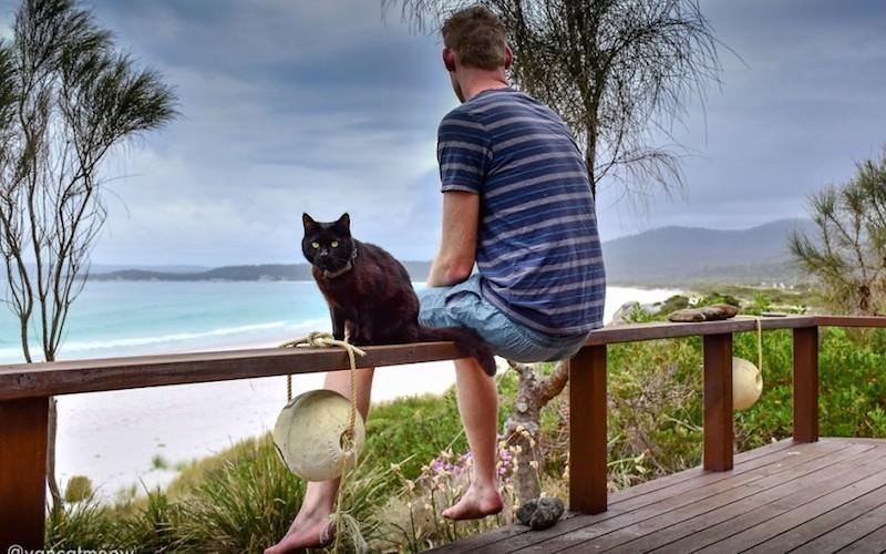 Парень продал дом и путешествует с котом