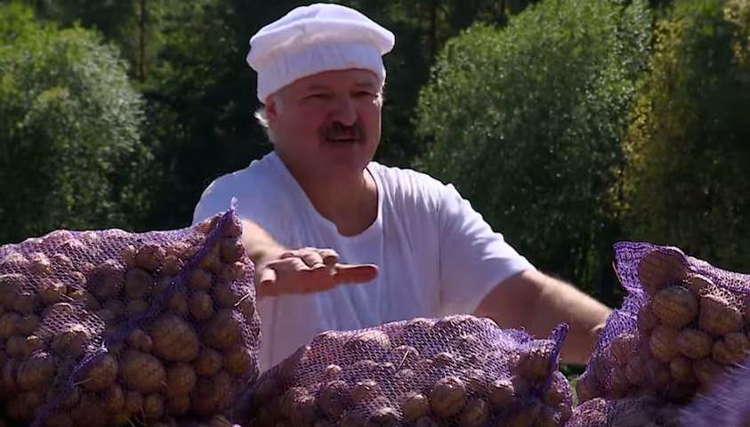 «Белорусы понимают, что выборы не будут честными»