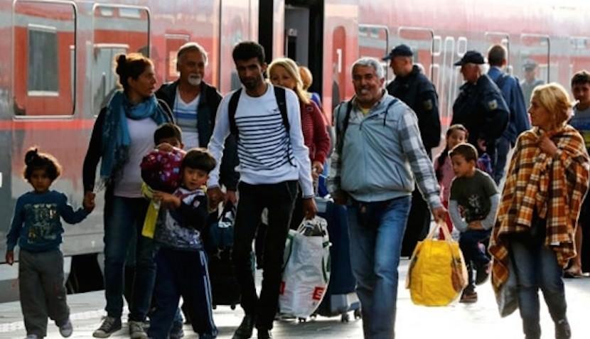 Минтруд предлагает раздать материнский капитал мигрантам