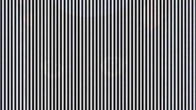 Оптическая иллюзия с котом озадачила пользователей Сети