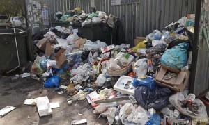 Красноярцы отправили в Госдуму посылки с мусором