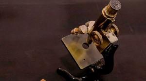 В Ташкенте найден золотой клад на миллион долларов - Блокнот