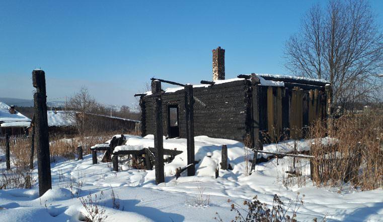 Кот 1,5 года живет на пепелище, ожидая своих сгоревших в пожаре хозяев