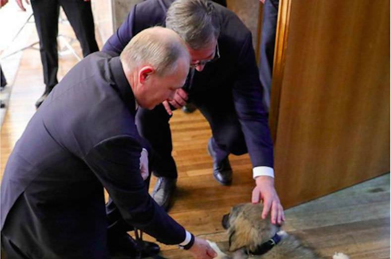 Путину подарили Пашу
