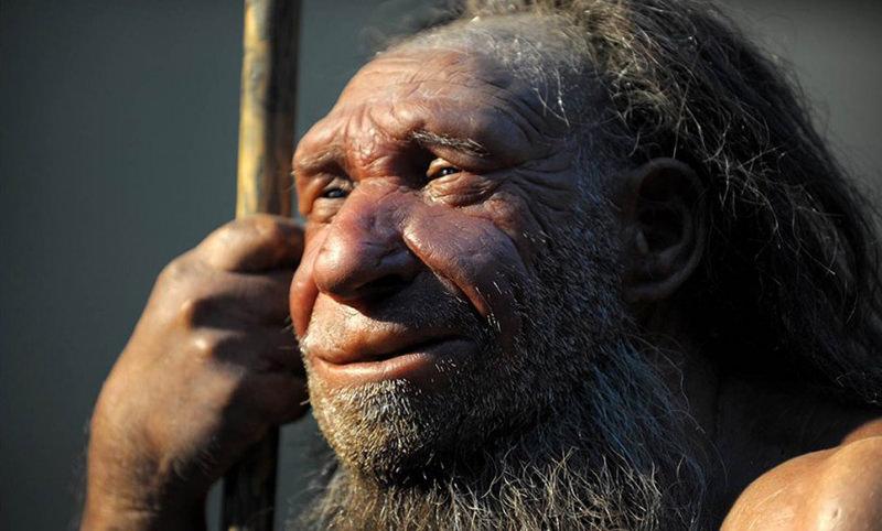 Календарь: 4 февраля - Миру был явлен неандерталец