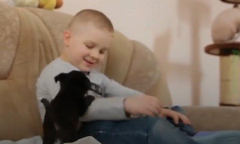 Маленький Ваня, который спас больше сотни животных