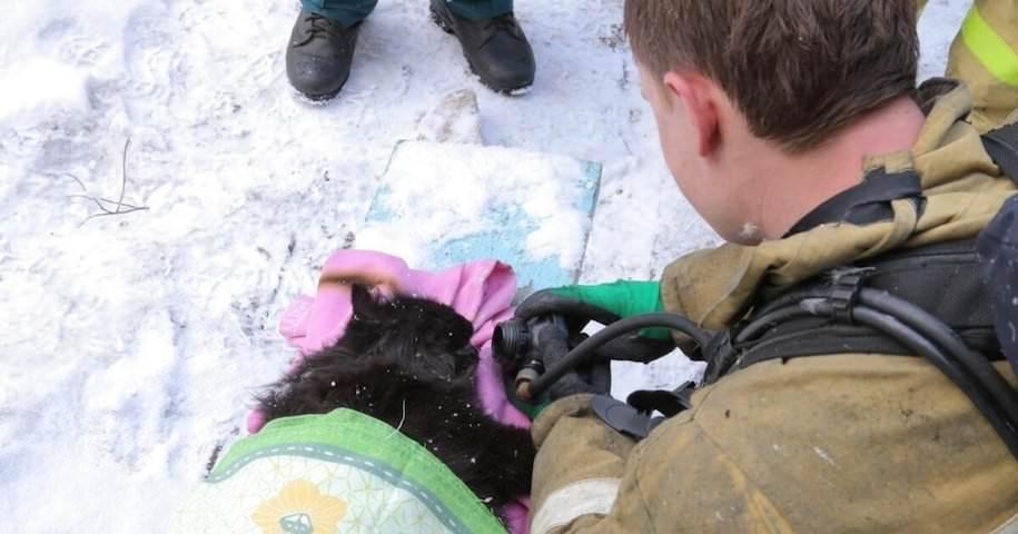 Пожарные спасли из горящей квартиры женщину и откачали ее котика