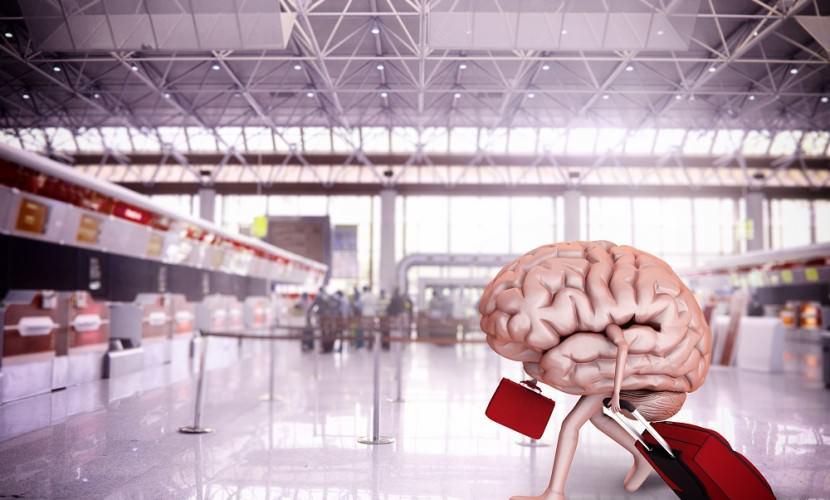Япония запустила план по «утечке мозгов» из России
