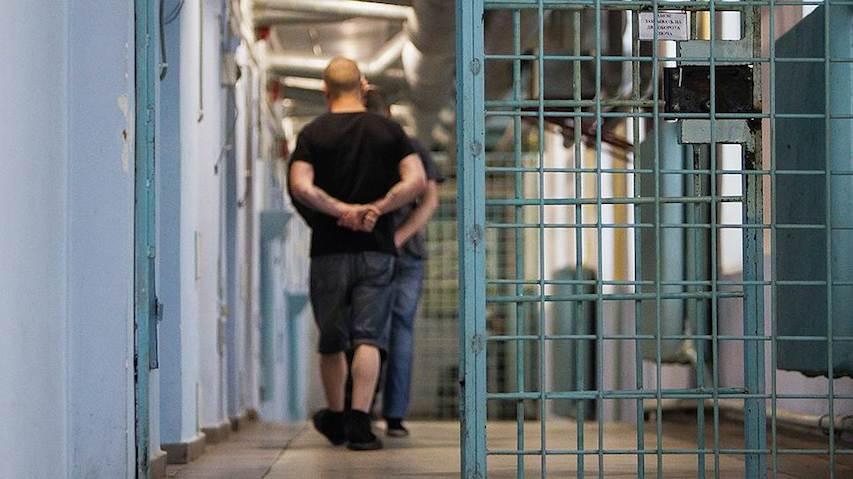 На свободу вышли более 10 тысяч человек по закону