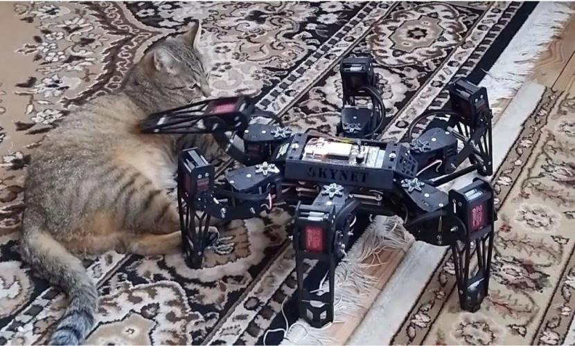Робот, который не победил кота - Блокнот