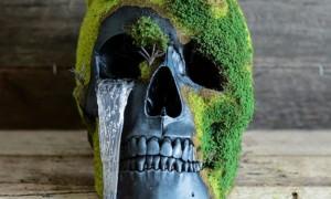 В США разрешили использовать останки людей для удобрений