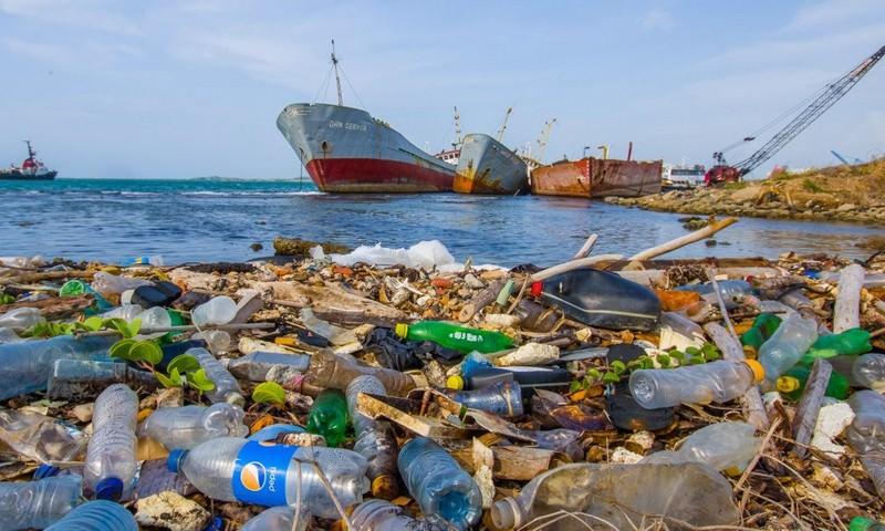В России захотели запретить пластиковую посуду