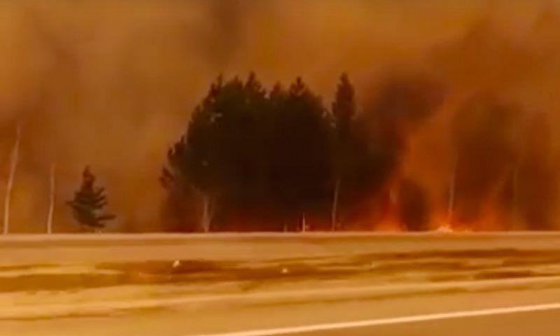 В Иркутской области виновников лесных пожаров будут искать по биллингу сотовых