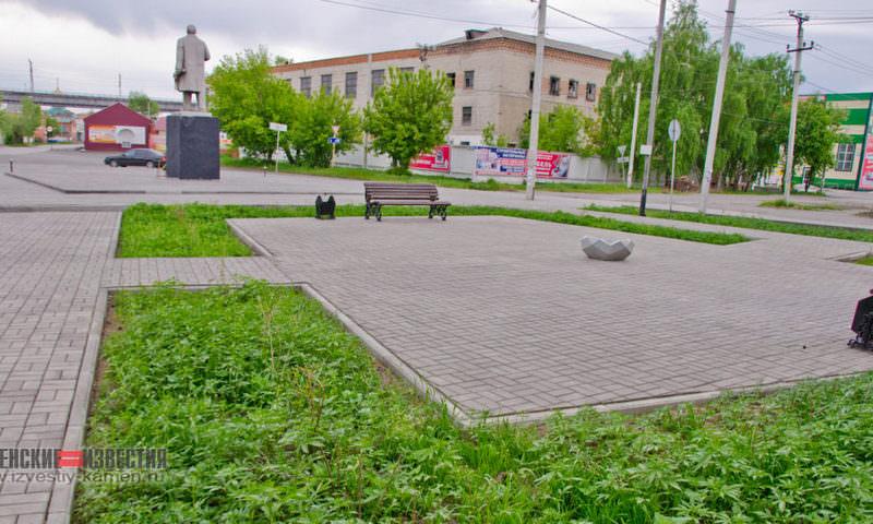 В Алтайском крае центр города засадили коноплей