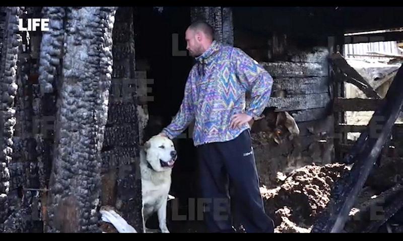 На Урале собака спасла многодетную семью от гибели в огне