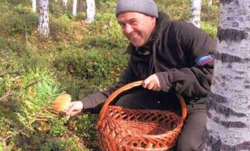 Правительство начнет контролировать сбор ягод и грибов