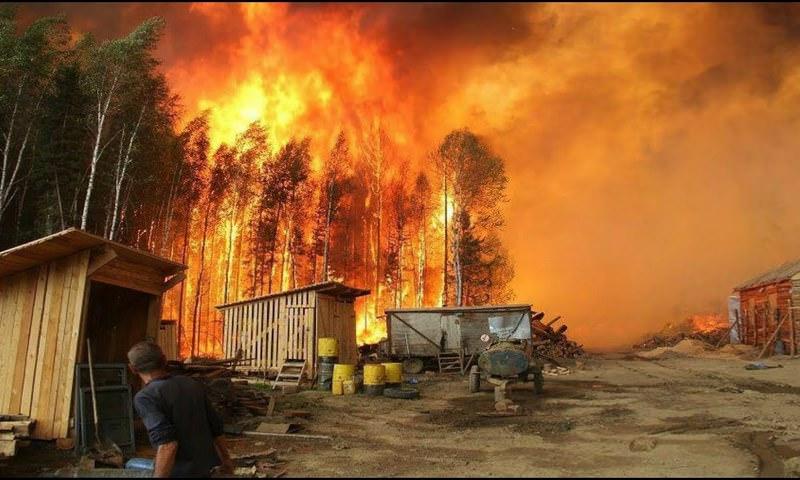 Площадь лесных пожаров в Красноярском крае стала сопоставима с территорией Черногории