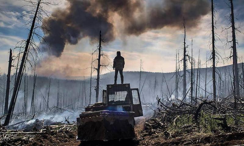 Названа причина распространения лесных пожаров в Сибири