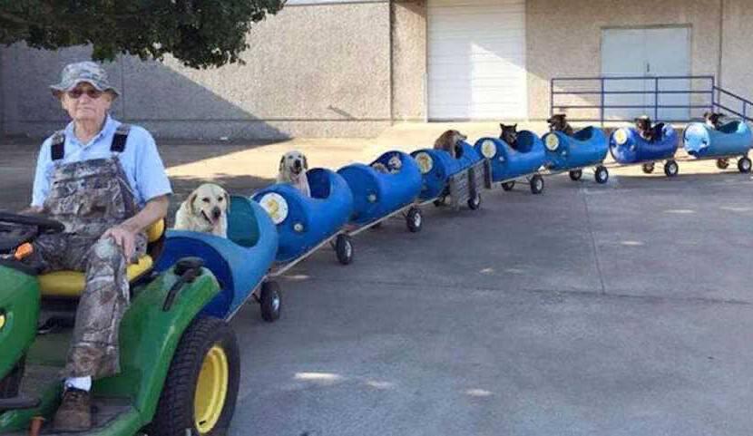 Мужчина сделал поезд, чтобы катать на нем бездомных собак